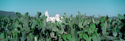 Mission San Xavier Del Bac from 1783-1797, Tucson, Arizona Photographic Print by Panoramic Images