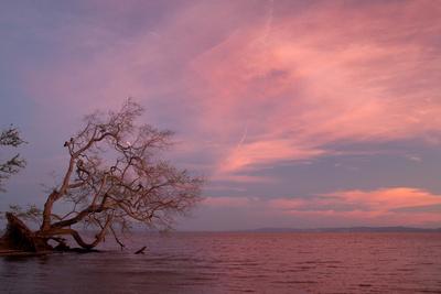 Lake Cocibolca, or Lake Nicaragua at Sunset Photographic Print by Jordi Busque