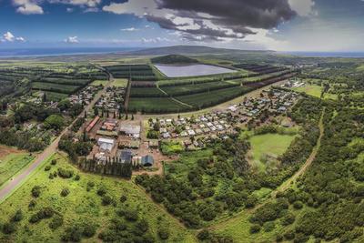 Aerial of Kualapuu Town, Molokai, Hawaii Photographic Print by Richard Cooke III