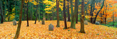 Noah Phelps Grave in Revolutionary War Cemetery in Autumn, Austerlitz, New York Photographic Print by Panoramic Images