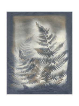 Shadows and Ferns V Posters by Renee W. Stramel