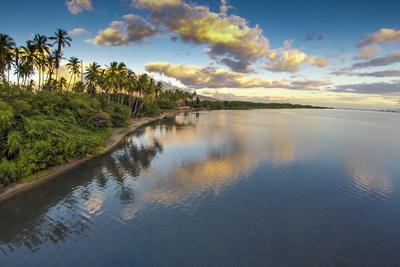 Aerial of Kapuaiwa Palm Grove, Molokai, Hawaii Photographic Print by Richard Cooke III