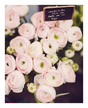 Flower Market Prints by Irene Suchocki