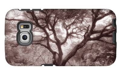 Old Oak Tree in the Oakland Hills Galaxy S6 Edge Case by Vincent James