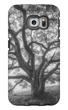Wild Oak Tree in Black and White Portait, Petaluma, California Galaxy S6 Edge Case by Vincent James