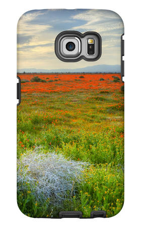 Wildflowers near Lancaster, California Galaxy S6 Edge Case by Vincent James