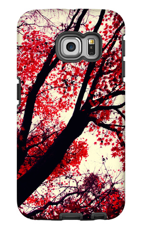 Fall Japanese Maples, Oakland Galaxy S6 Edge Case by Vincent James