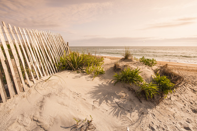 Beach Near Kitty Hawk, Outer Banks, North Carolina, United States of America, North America Photographic Print by Michael DeFreitas