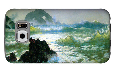 Seal Rock Galaxy S6 Case by Albert Bierstadt