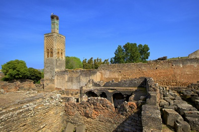 The Ruins of Chellah with Minaret, Rabat, Morocco, North Africa, Africa Photographic Print by Neil Farrin