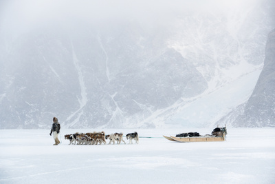 Inuit Hunter Walking His Dog Team on the Sea Ice in a Snow Storm, Greenland, Denmark, Polar Regions Photographic Print by Louise Murray