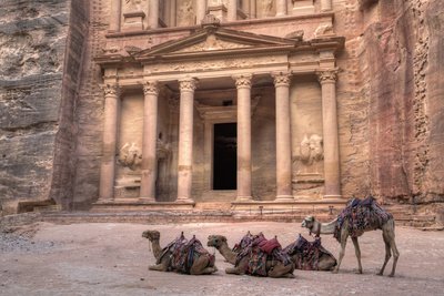 Camels in Front of the Treasury, Petra, Jordan, Middle East Photographic Print by Richard Maschmeyer
