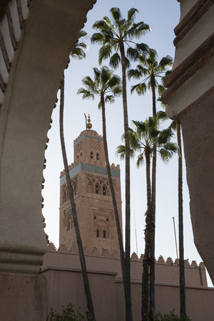 Minaret of Koutoubia Mosque with Palm Trees, UNESCO World Heritage Site, Marrakesh, Morocco Photographic Print by Stephen Studd