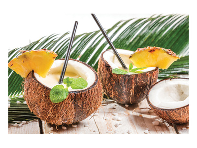 Coconut Pinacolada & Palm Leaf Posters