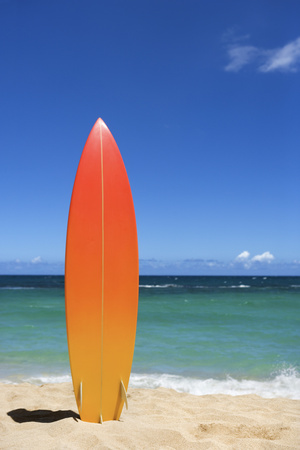 Surfboard on Beach Photographic Print by  Jupiterimages