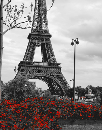 Eiffel Tower with Red Pop Posters by Emily Navas