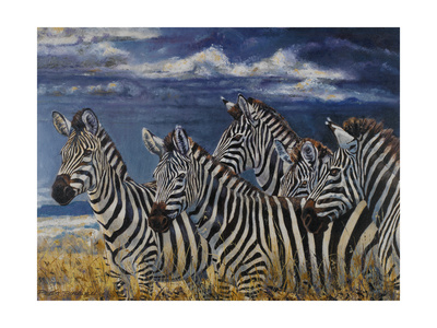 Zebras I Prints by Peter Blackwell