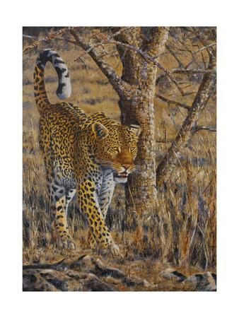 Leopard Walking Art by Peter Blackwell