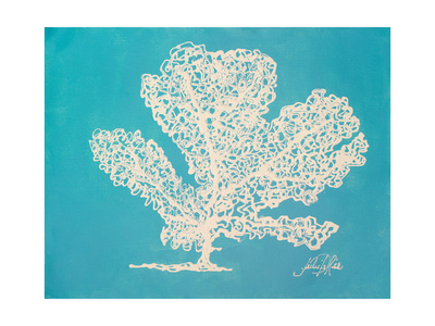 White Coral I Prints by Julie DeRice