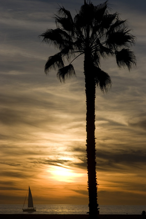 Sunset, Santa Monica Beach Photographic Print by Natalie Tepper