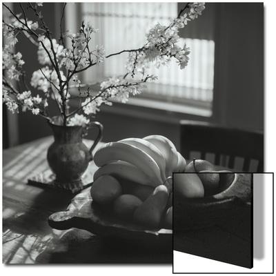 Flowers and Fruit Still Life UMĚNÍ NA AKRYLU