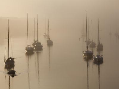 Sailboats on their Harbor Moorings, in Early Morning Fog Kunst på metal af Nigel Hicks