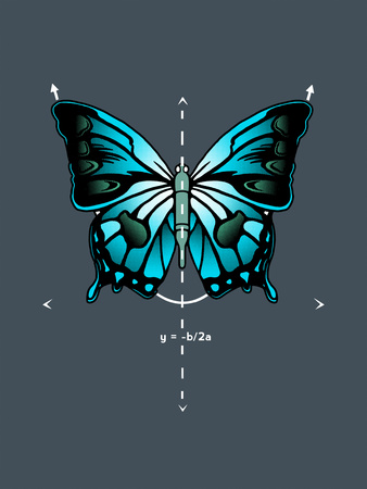 Symmetry Butterfly Photo by  Boots