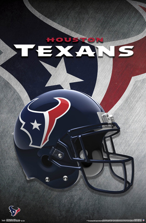 Houston Texans - Helmet 2015 Photo