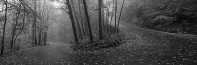 Winding Road Through Mountainside in Autumn, Monadnock Mountain, New Hampshire, USA Photographic Print by  Panoramic Images