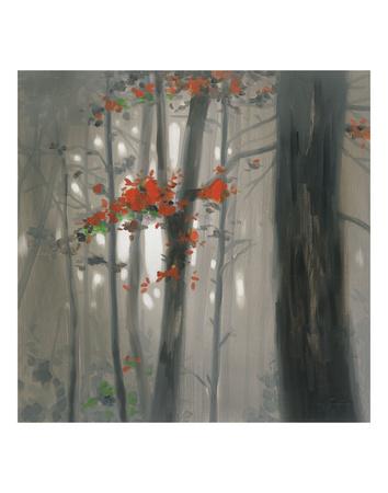 Autumn Embers Posters by Seth Garrett