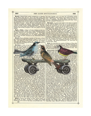 Birds on a Skateboard Print by Marion Mcconaghie