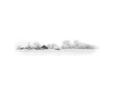 Dakota Frost Art by Stephen Gassman