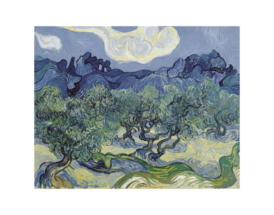 The Olive Trees, 1889 Posters by Vincent van Gogh