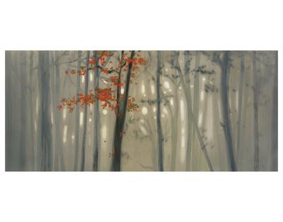 Fall Foliage Posters by Seth Garrett
