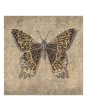 Leopard Butterfly Prints by Jennette Brice