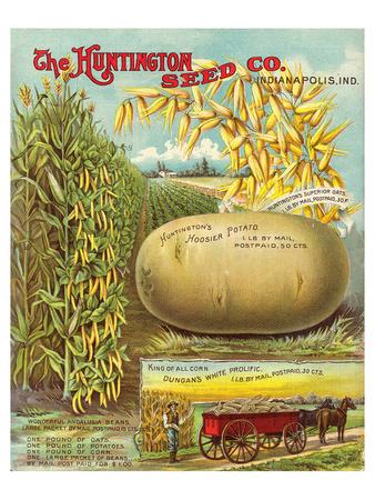 Huntington Seed Indianapolis Posters