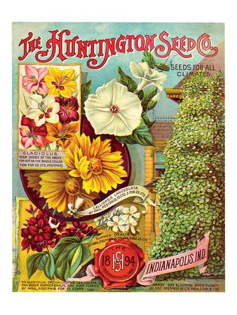 Huntington Seed Indianapolis Premium Giclee Print
