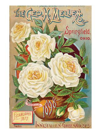 Mellen Seeds Springfield Ohio Prints