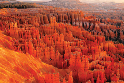 Bryce Sunrise Posters by Gary Crandall