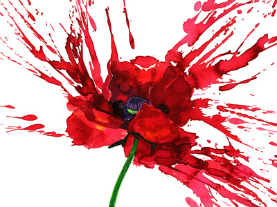 Poppy Flower Posters by  okalinichenko