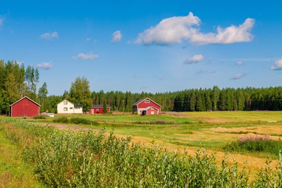 Red Houses in A Rural Landscape Photographic Print by  nblx