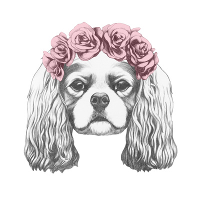 Portrait of Cavalier King Charles Spaniel with Floral Head Wreath. Hand Drawn Illustration. Prints by  victoria_novak