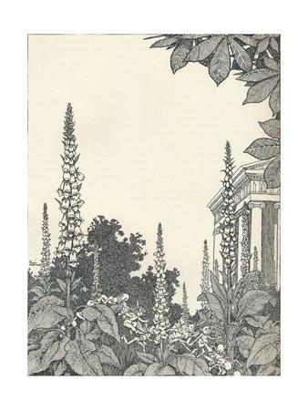 Illustration to a Midsummer Nights Dream, 1914 Giclee Print by W Heath Robinson