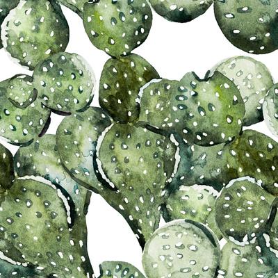 Watercolor Cactus Pattern Prints by  Zenina