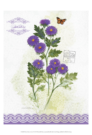 Flower Study on Lace II Poster by Elissa Della-piana