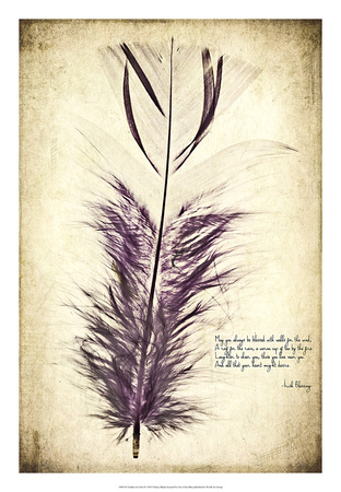 Feather in Color II Giclee Print by Honey Malek