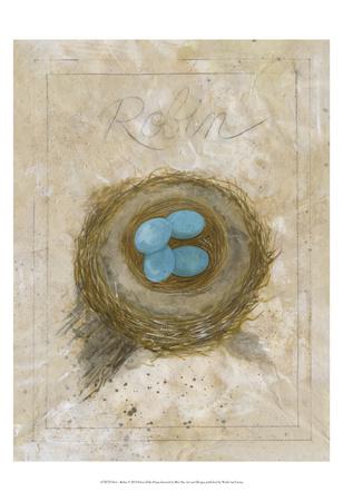 Nest - Robin Stampe di Elissa Della-piana