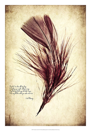 Feather in Color III Giclee Print by Honey Malek