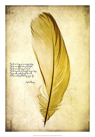 Feather in Color IV Giclee Print by Honey Malek