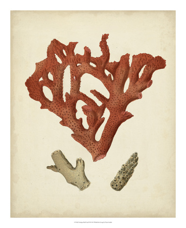 Antique Red Coral II Giclee Print by Vision Studio